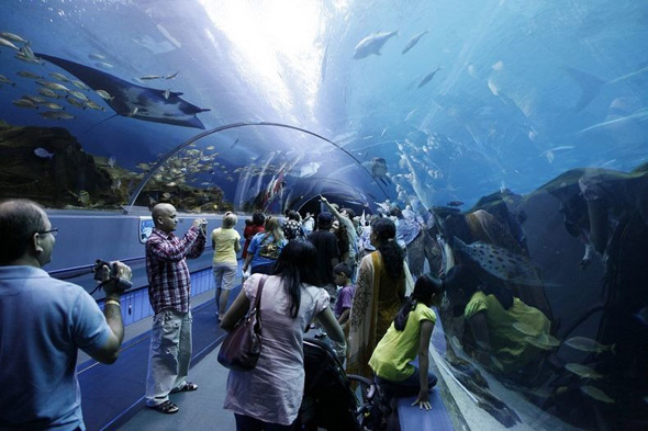 maior-aquario-do-mundo-05