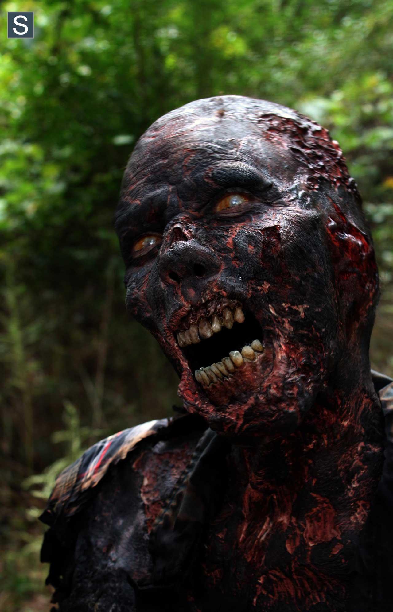 Zumbi Queimado do 14º episódio da 4ª Temporada de The Walking Dead.