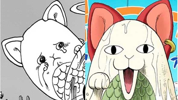 one-piece-gato-marinho