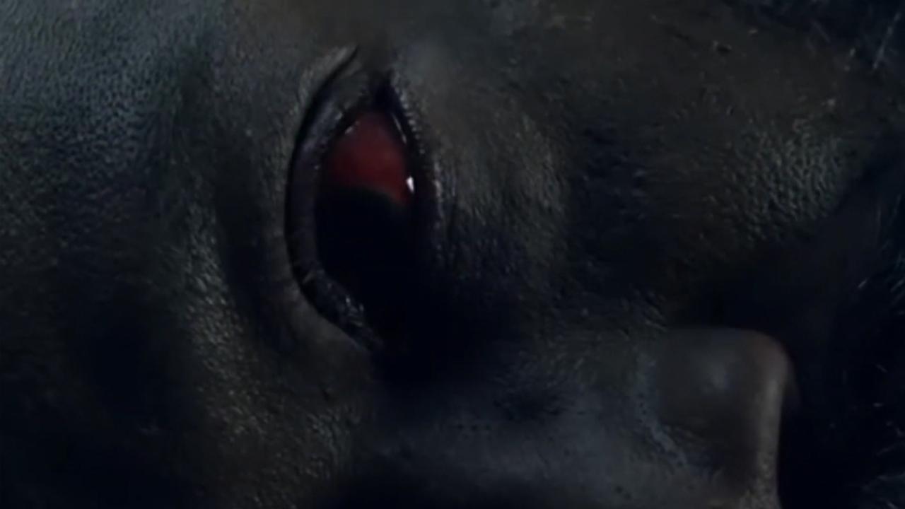 Morgan ficou à beira da morte no final da 5ª temporada de Fear The Walking Dead.